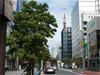 Tokyoshiba_070716