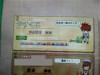 Yasukuni_080625