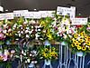 Flowerstand_120623