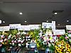 Flowerstandkuro_120623
