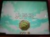 Flowercupy_061126_8