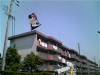 Hamamatsukyteflyingfestival_070503_2